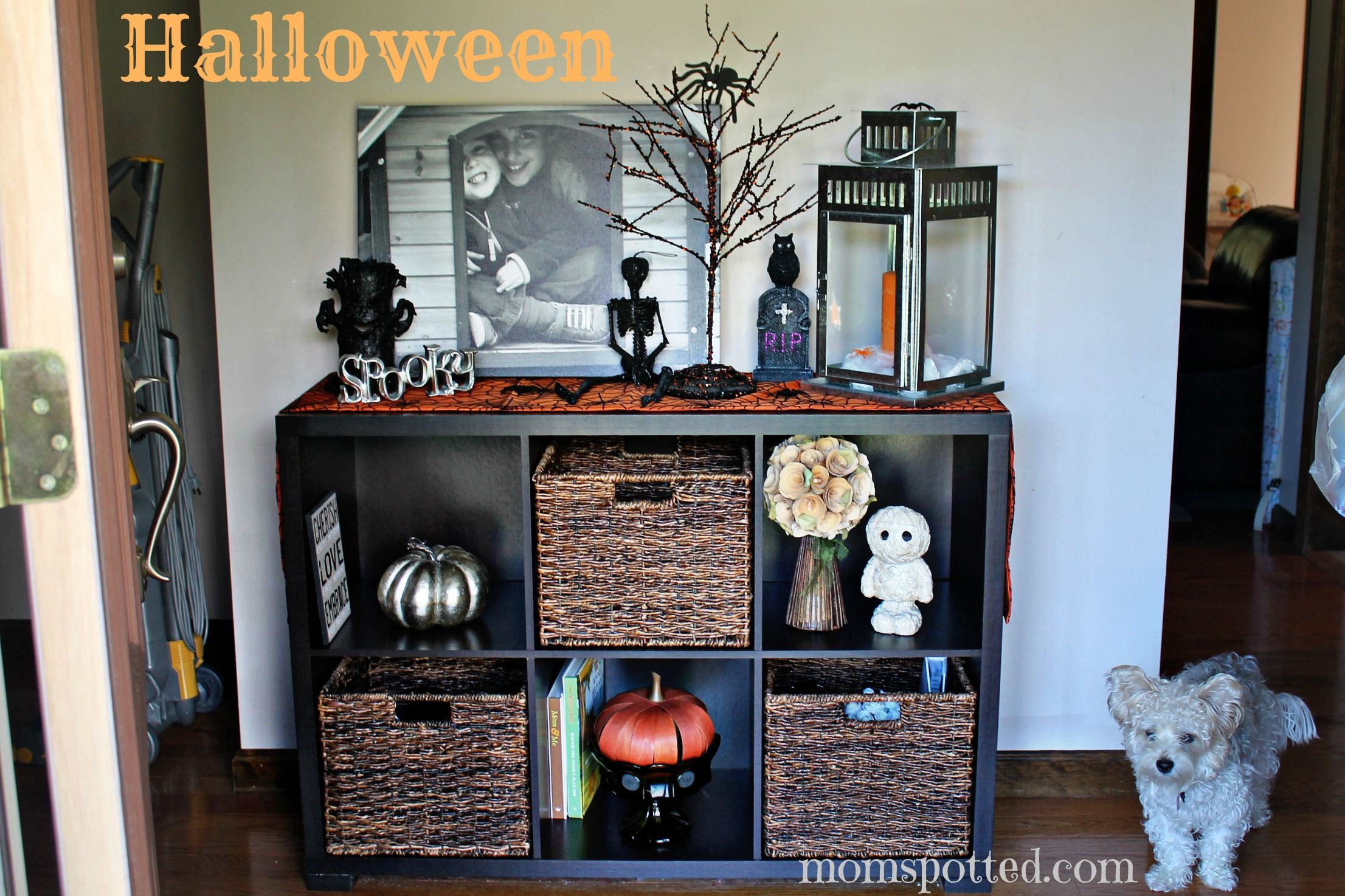 Pin by Kim McGowan on Halloween Pinterest Autumn - Decorating For Halloween