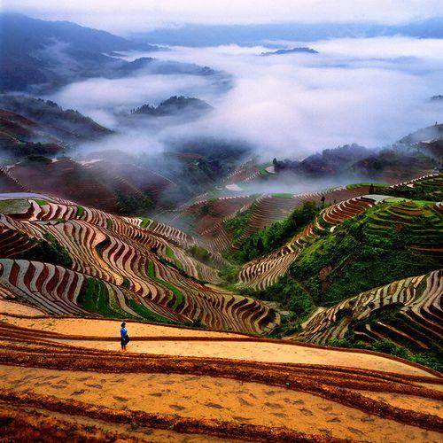 China Terrazas De Yunnan Guizhou Places To Travel Beautiful Places Scenery