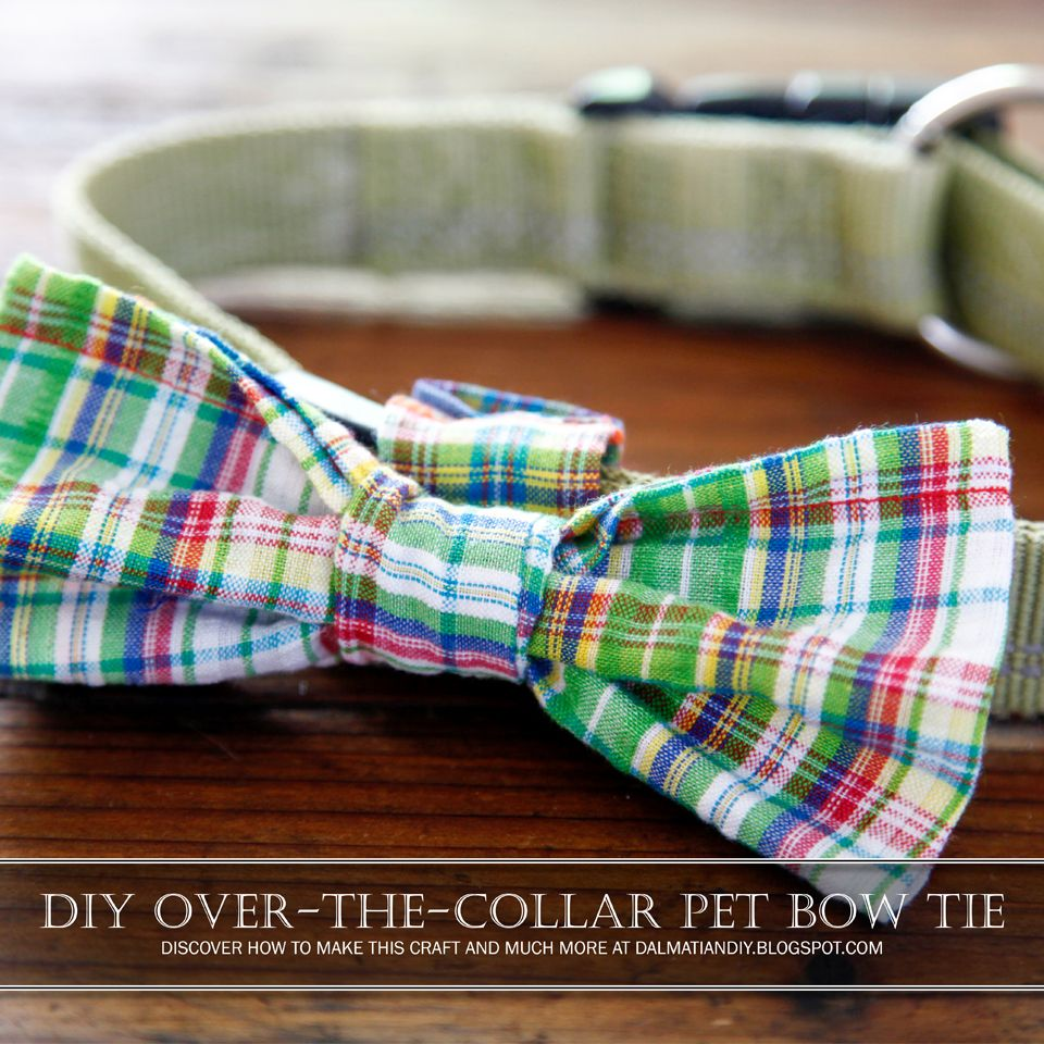 DIY Easy Sew OvertheCollar Bow Tie for Dogs Diy dog