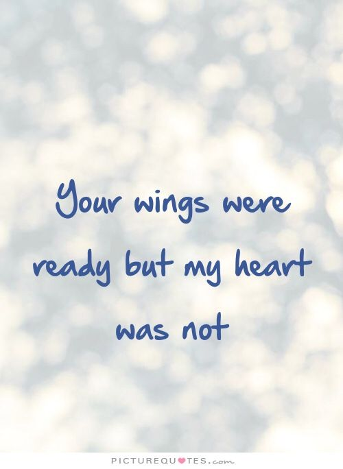 Your Wings Were Ready But My Heart Was Not Picturequotescom