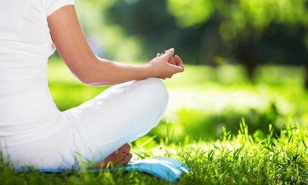 paul roberts yoga  basic yoga yoga poses for beginners