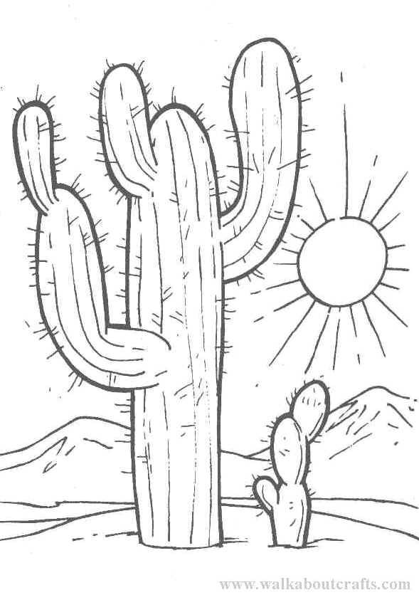 pictures of cactus coloring pages nessie friends scottish