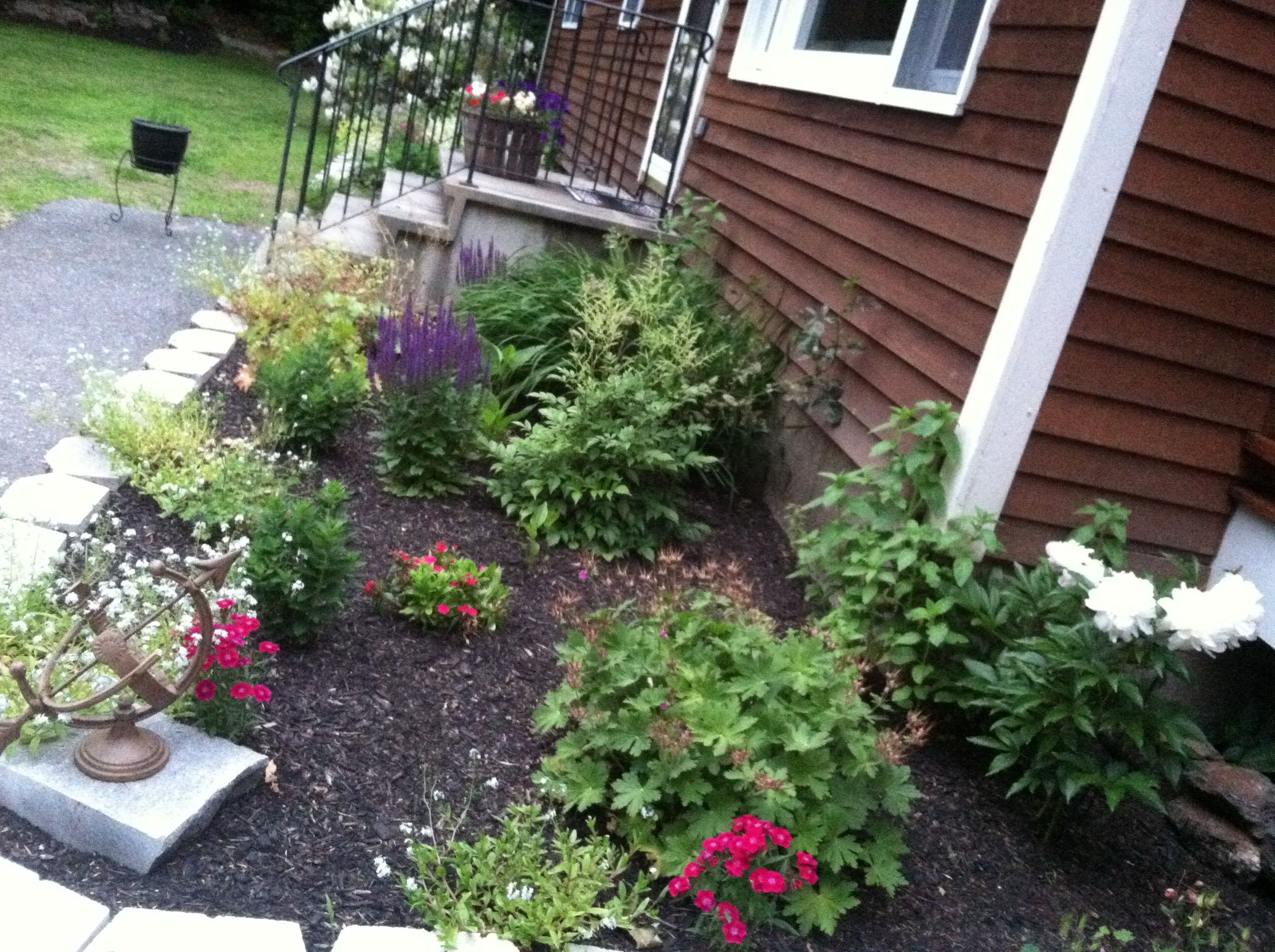 My raised bed in front of my