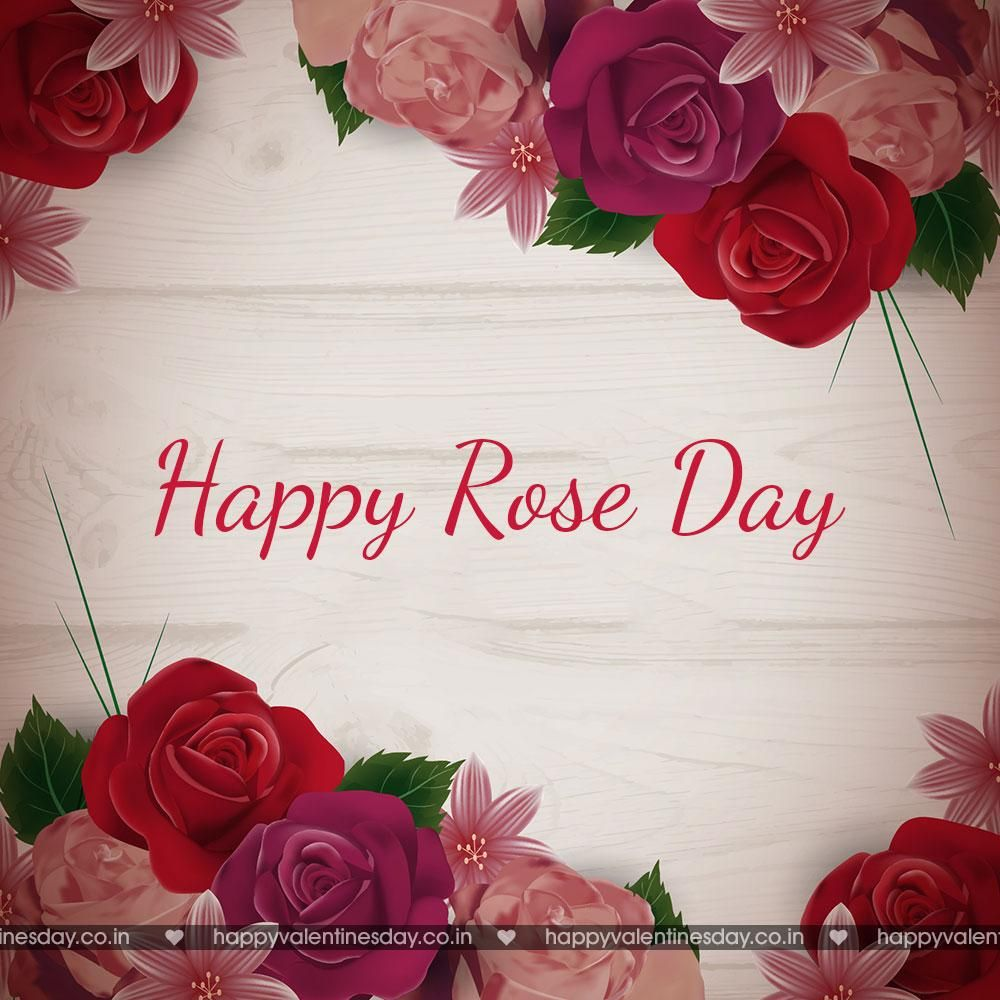 Rose Day Happy Valentines Day Sign