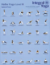 your yoga class  yoga moves for beginners hatha yoga