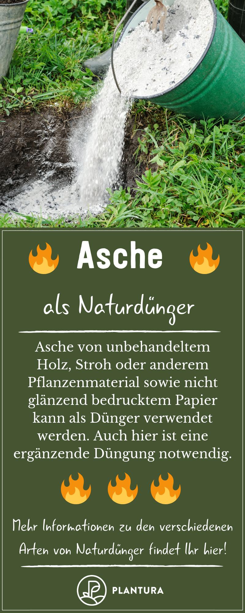 Naturdunger Anwendung Vorteile Von Naturlichem Dunger Plantura Dunger Fur Pflanzen Pflanzen Garten Pflanzen