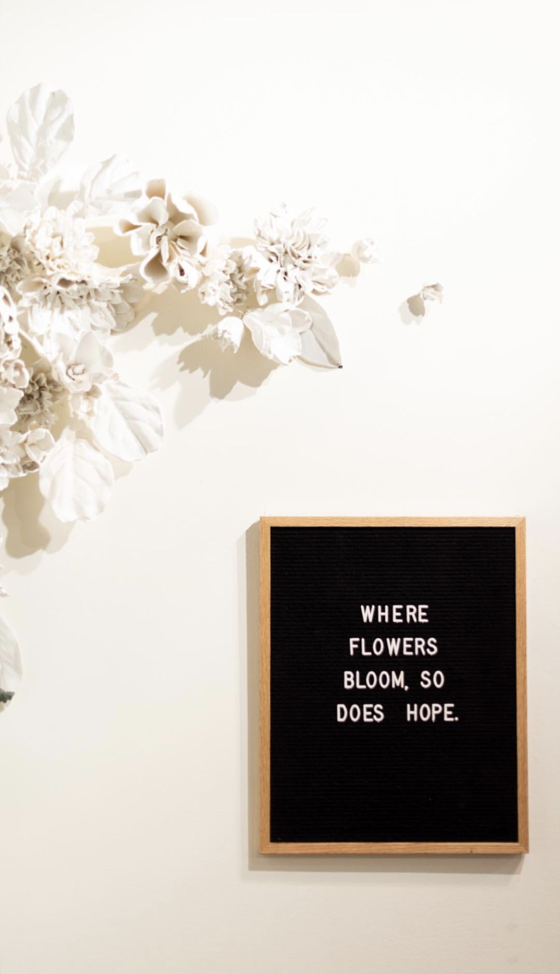 Where Flowers Bloom So Does Hope Quotes About Flowers Blooming Bloom Quotes Flower Quotes