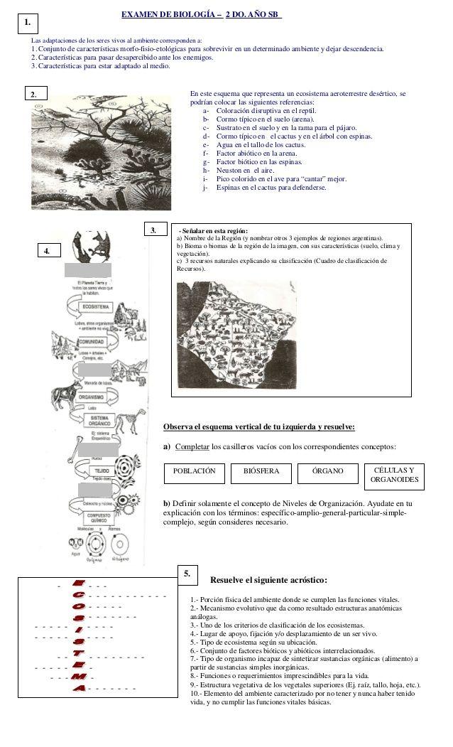 Examen De Biología 2 Do Año Sb Las Adaptaciones De Los Seres Vivos Al Ambiente Corresponden A 1 Conjunto De Caracterí Biología Biologia 2 Teoría Celular