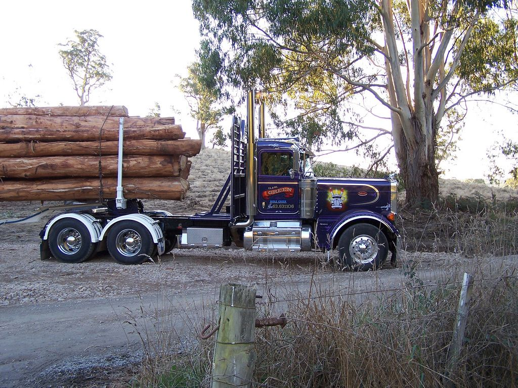 379 Peterbilt Log Truck Trucks Peterbilt Peterbilt Trucks