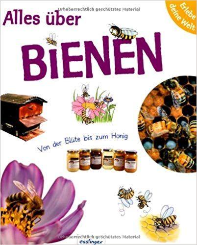 Erlebe Deine Welt Alles Uber Bienen Von Der Blute Bis Zum Honig Amazon De Sophie Lebot Pascale Hedelin Anne Brauner Bienen Bucher Fur Kinder Honigbiene