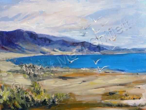 """Seagulls At Mono Lake"" - by Juliet Mevi"