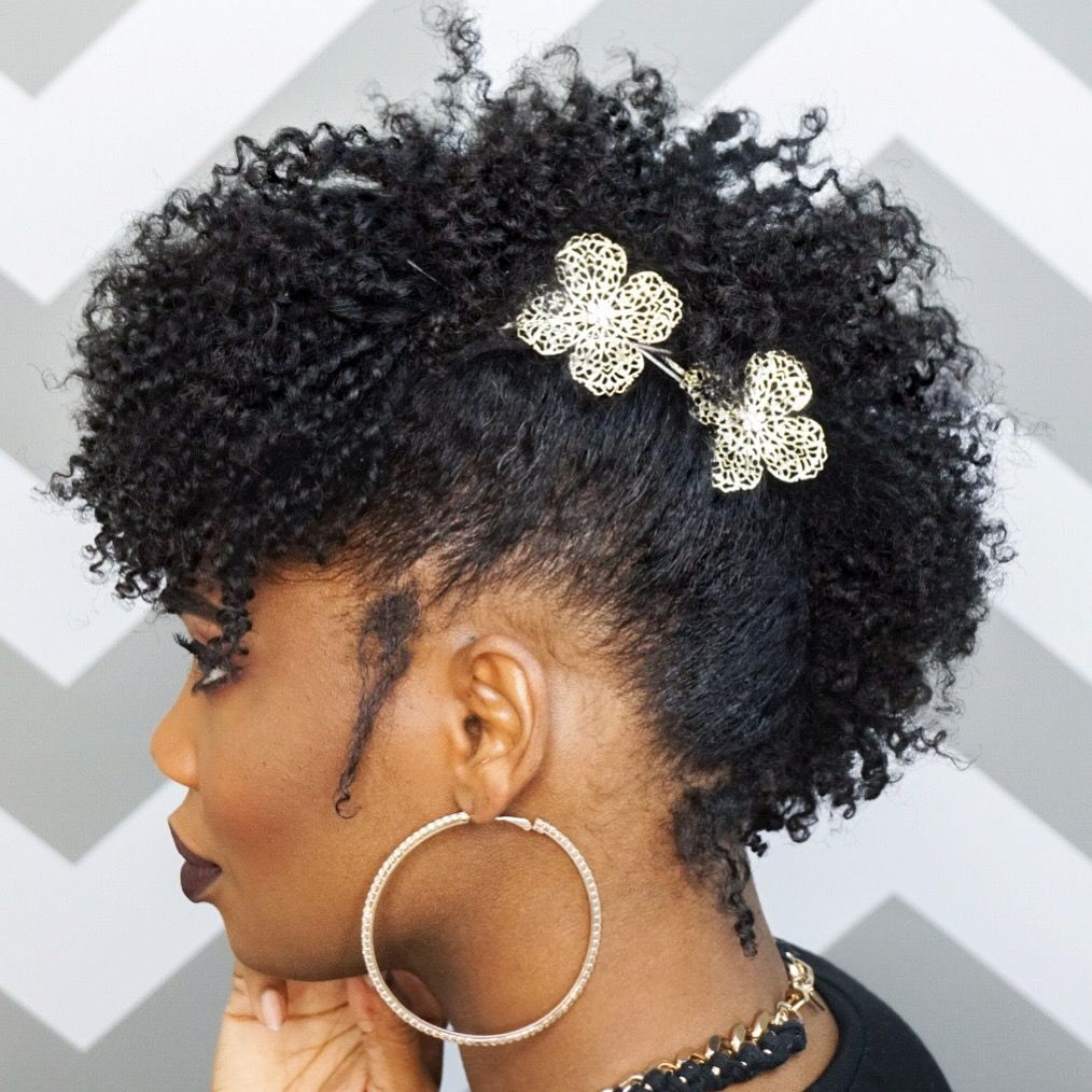pin on my natural hair styles