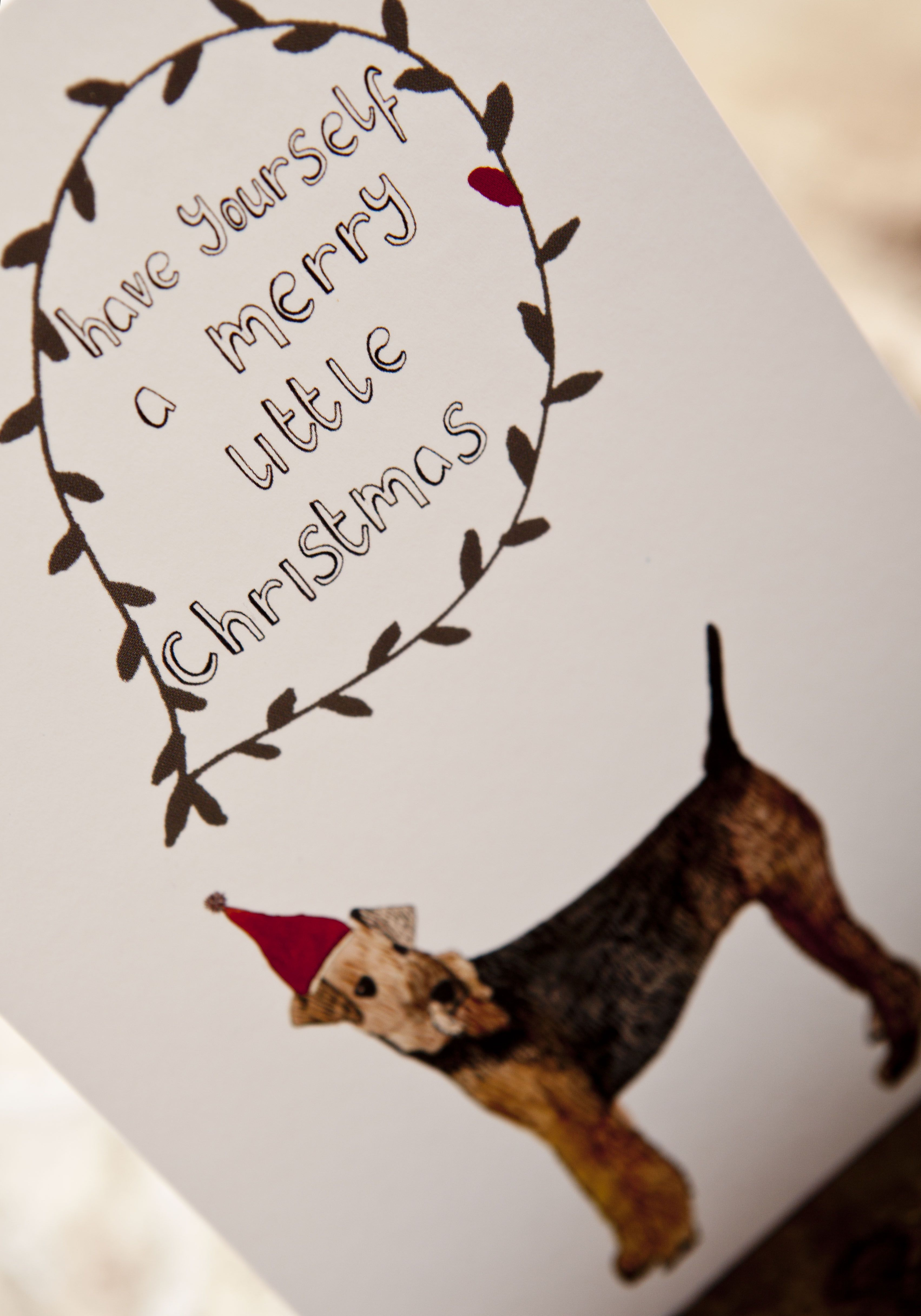Christmas Cards! @Sherri Breshears, we need to make these with Ellie on them!
