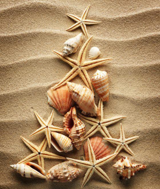 Coastal Christmas Christmas By The Sea Pinterest Christmas