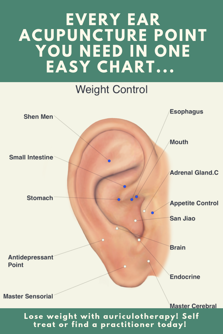 see all our master auriculotherapy charts with dozens of different