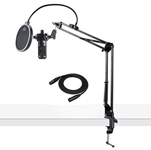Audio Technica Cardioid Studio Condenser Microphone Sale Instrumentstogo Com Audio Technica Audio Microphone