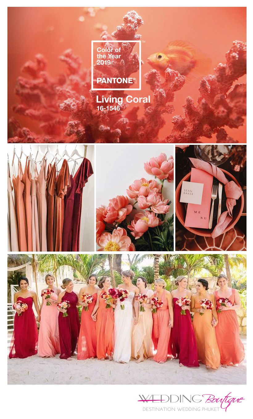 Blog: Wedding Trends: Pantone 2019 Coral   Wedding Boutique   Phuket Wedding Planner