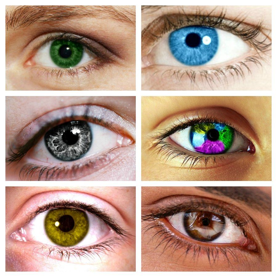 Percy Jason Annabeth Piper Hazel And Leo Eye Color Percy Jackson Eye Color Percy