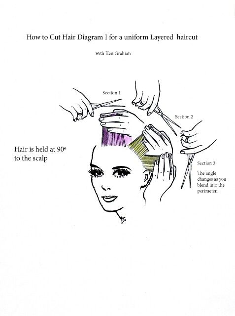 how to cut hair in layers diagram 3