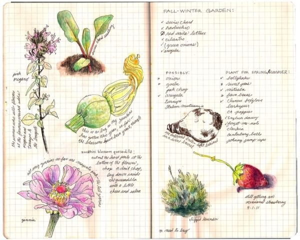 Garden Journal Google Search With Images Art Journal Pages