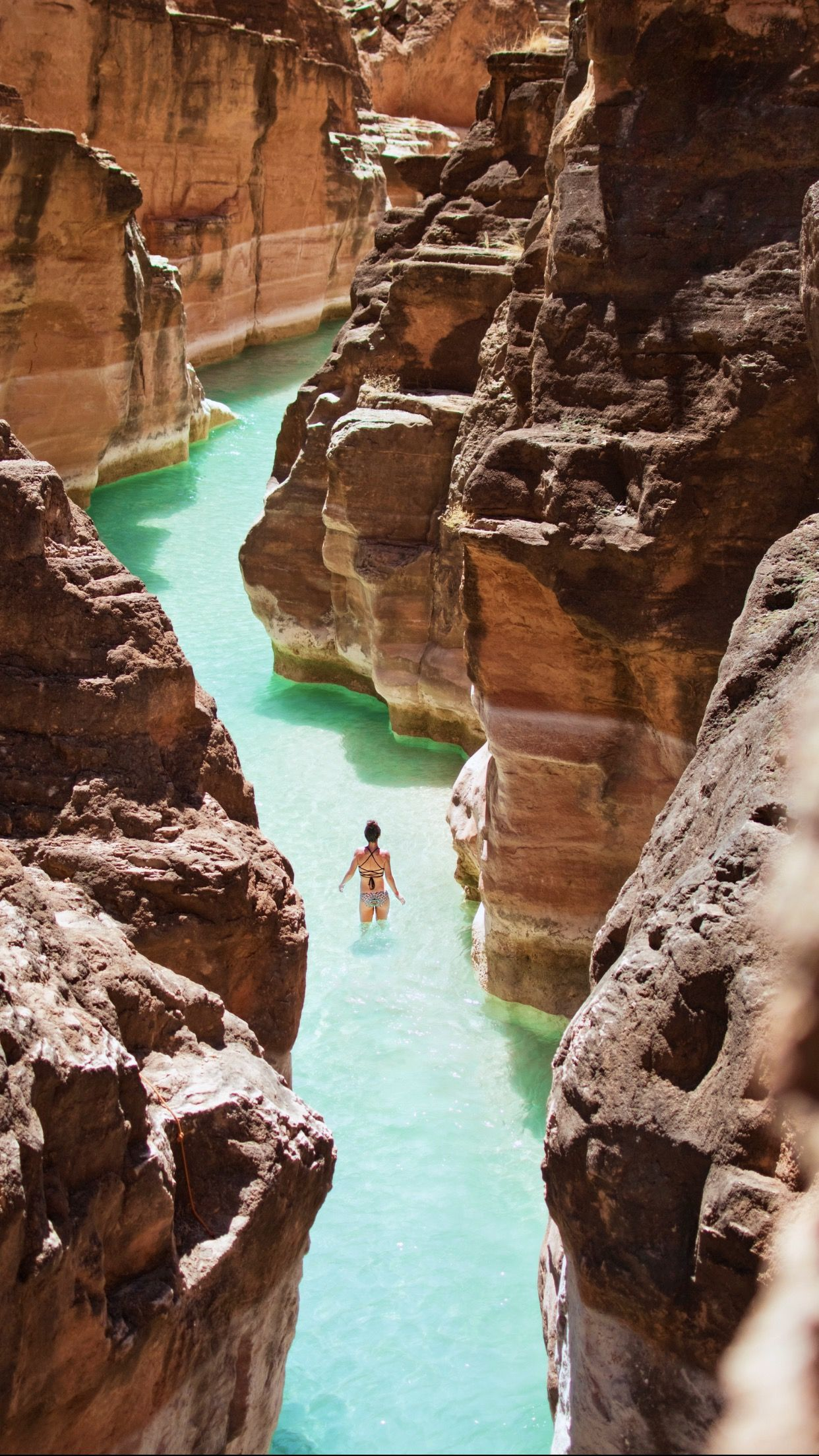 Hiking through Havasu Creek in 2020 Grand canyon