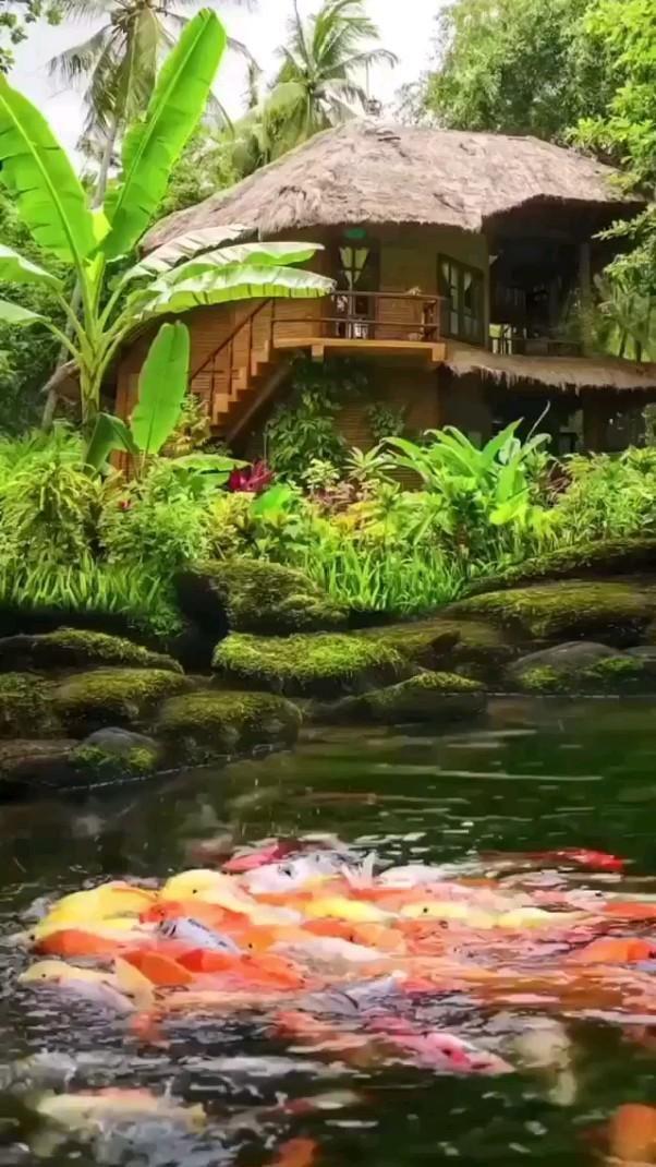 Very Beautiful Nature Water