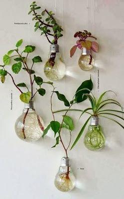Méchant Studio Blog: indoor spring garden