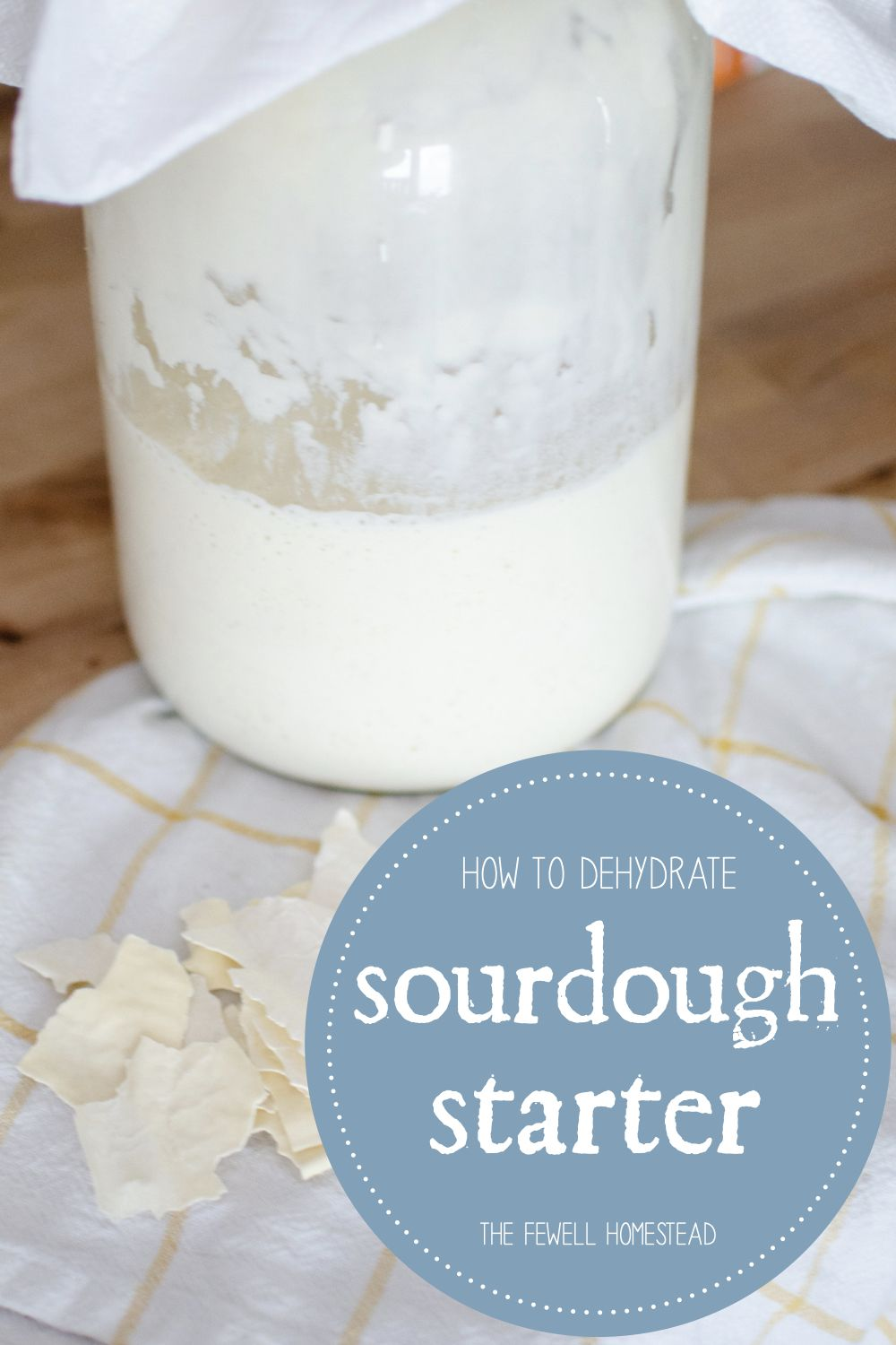How to Make Dehydrated Sourdough Starter Amy K. Fewell