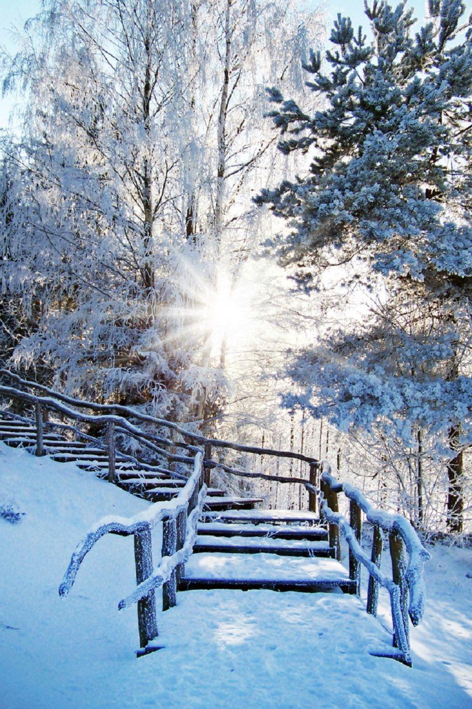 Beautiful Winter Outfit Www Pinterest Com: Beautiful Winter Scenes, Winter