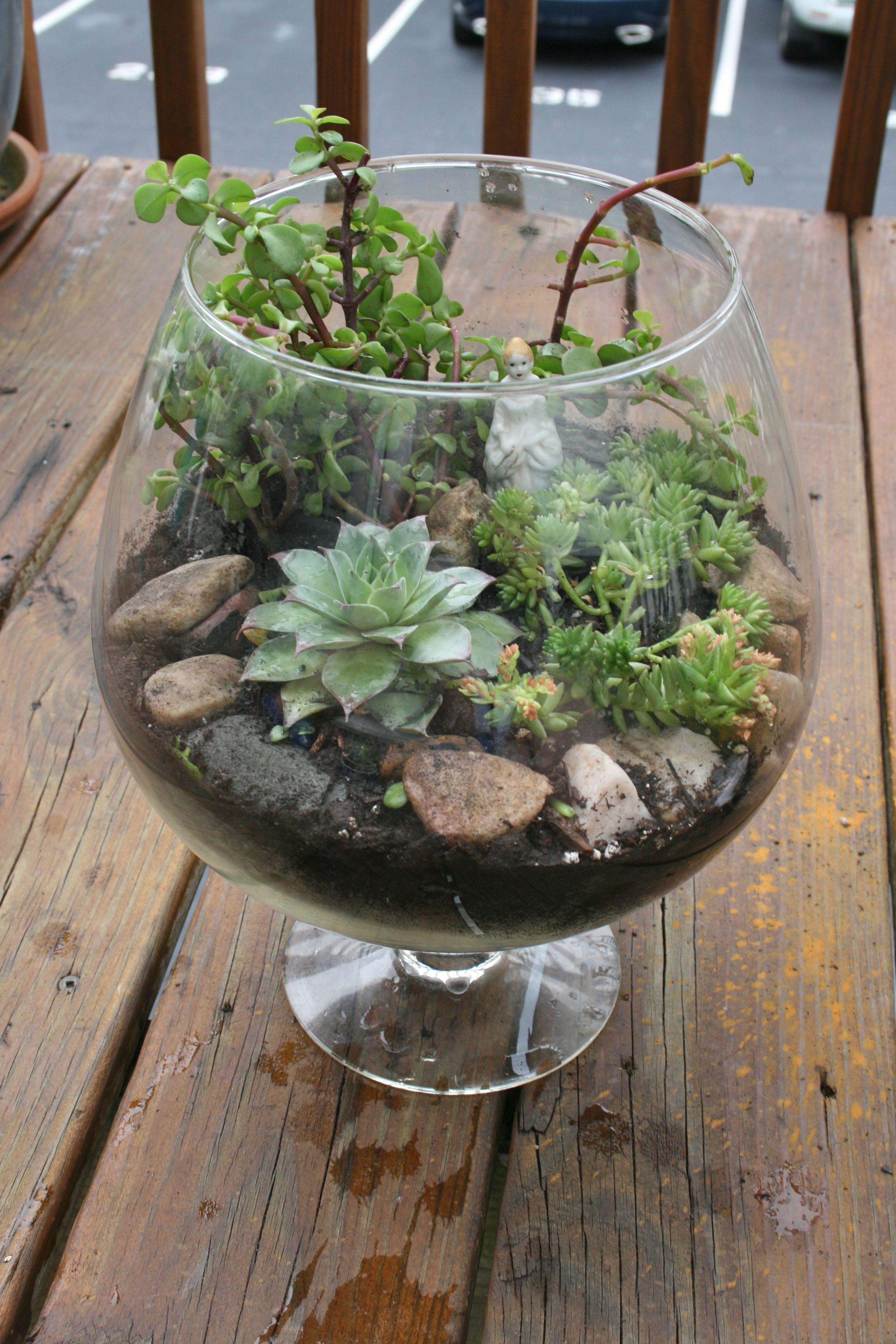 Craft Glass Cage Terraria