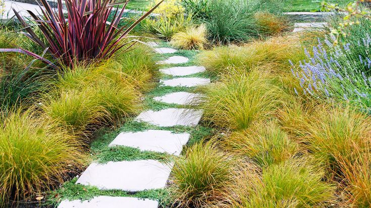 Photo of Garden Paths Concrete Landscaping