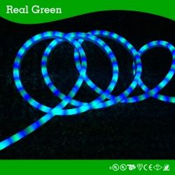 Neon Effect Ocean Blue Led Rope Light Smd5050 Led Strip Rope Light 12v 24v 120v Real Green Lighting Company Limi Led Rope Lights Led Down Lights Rope Light