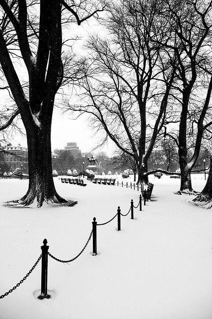 Public Garden Snow by Lucie Wicker, via Flickr #Boston #snow #winter