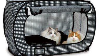 参考災害時におけるペットの救護対策ガイドライン 環境省 猫バック 猫用ベッド 猫用ケージ