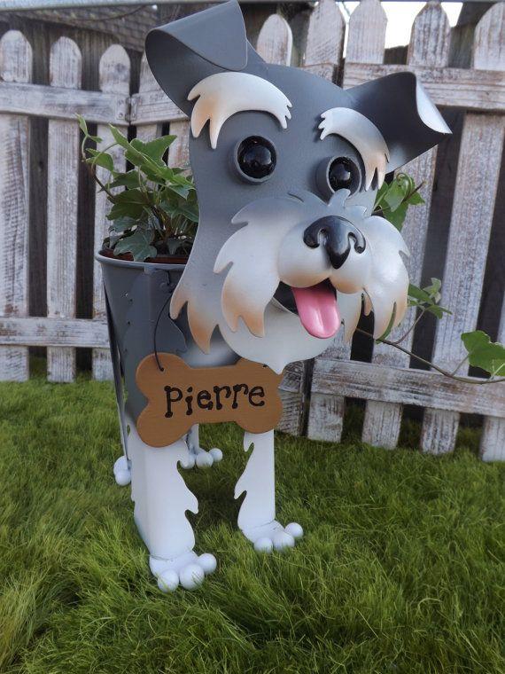 Dayton Oh Poodle Miniature Mix Meet Sienna A Dog For Adoption Http Www Adoptapet Com Pet 13036717 Dayton Ohio Poodl Dog Adoption Kitten Adoption Pets