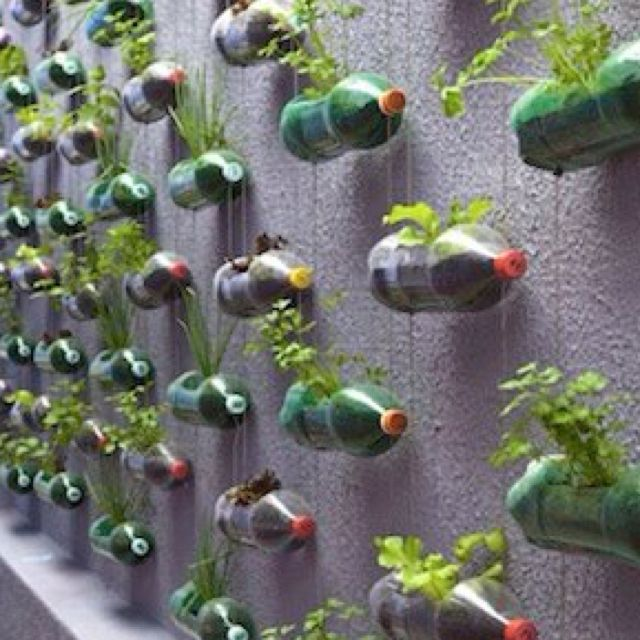 A great way to recycle 2 liter bottles.