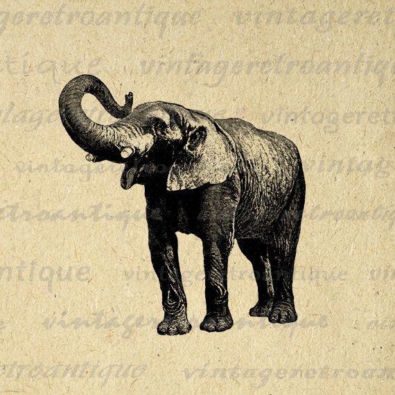 vintage elephant clip art - photo #10
