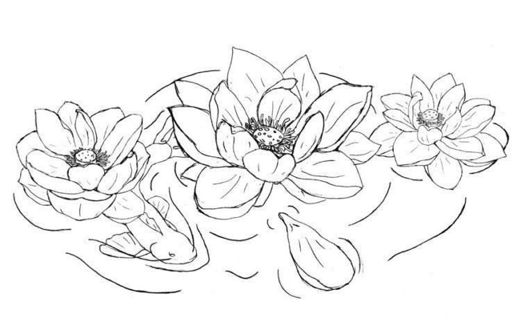 Gambar Bunga Teratai Yg Mudah 39 Gambar Sketsa Bunga Indah Sakura Mawar Melati Matahari 3 Cara Membuat Bunga Dari Sedotan Di 2020 Gambar Simpel Sketsa Lukisan Bunga