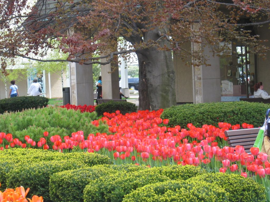oakbrook mall favorite places and spaces pinterest