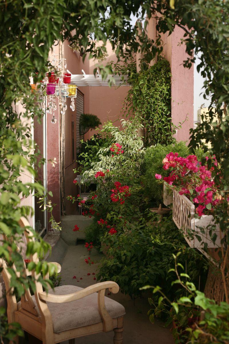 of da vincis and botticellis flower garden design Flower Garden In Balcony id=91544