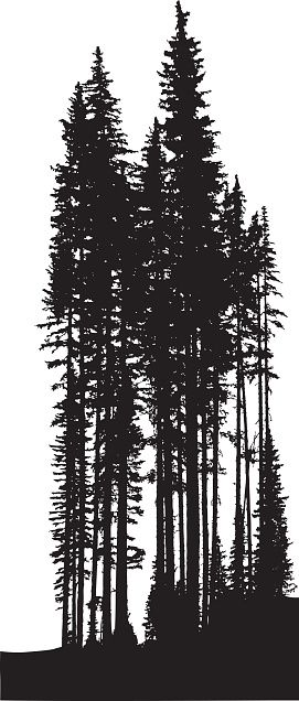 A vector silhouette illustration of a tree line of dense ...