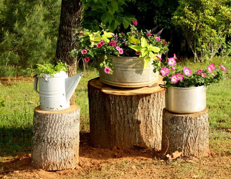 Pin By Gayle Johnson Wagner On Landscaping Tree Stump Decor Farmhouse Style Diy Planting Flowers