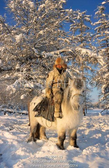 Image de Sleptsov Pavel, un vieux chasseur de 35 ans, sur son cheval au Korban dans l'heure d'hiver. Yakoutie, Sibérie, en Russie. par ArcticPhoto