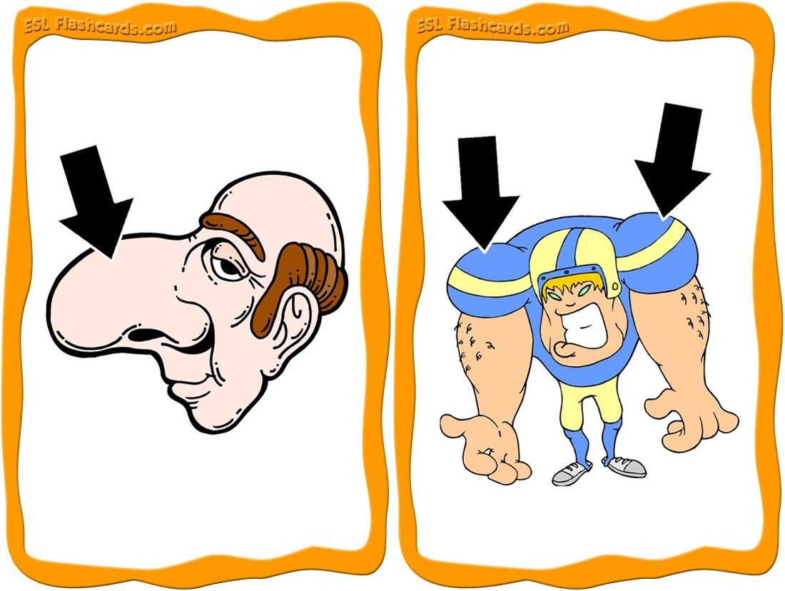 Download A Set Of 18 Printable Body Parts Flashcards For