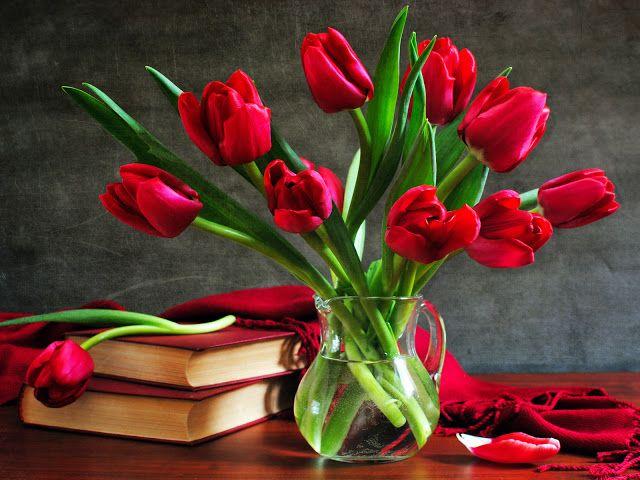 fotos de tulipanes en florero