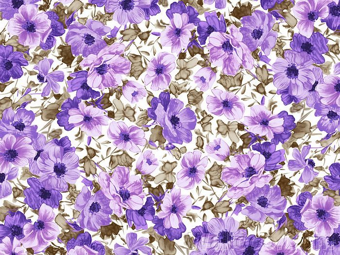 Artistic Floral Patterns And Flower Illustrations Purple