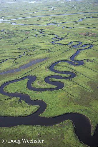 Afbeeldingsresultaat voor meander