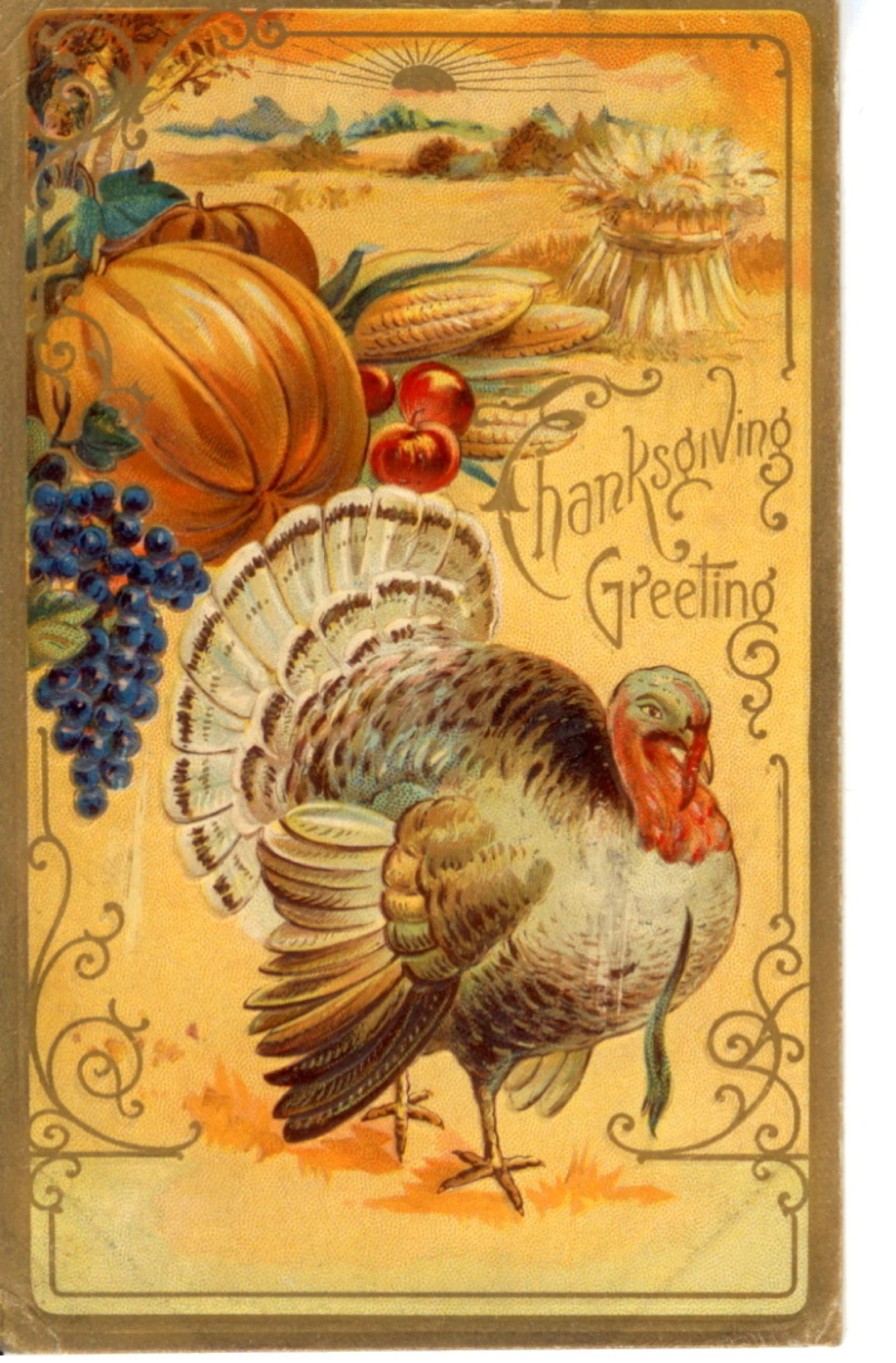 Vintage Thanksgiving Postcards Public Domain Images