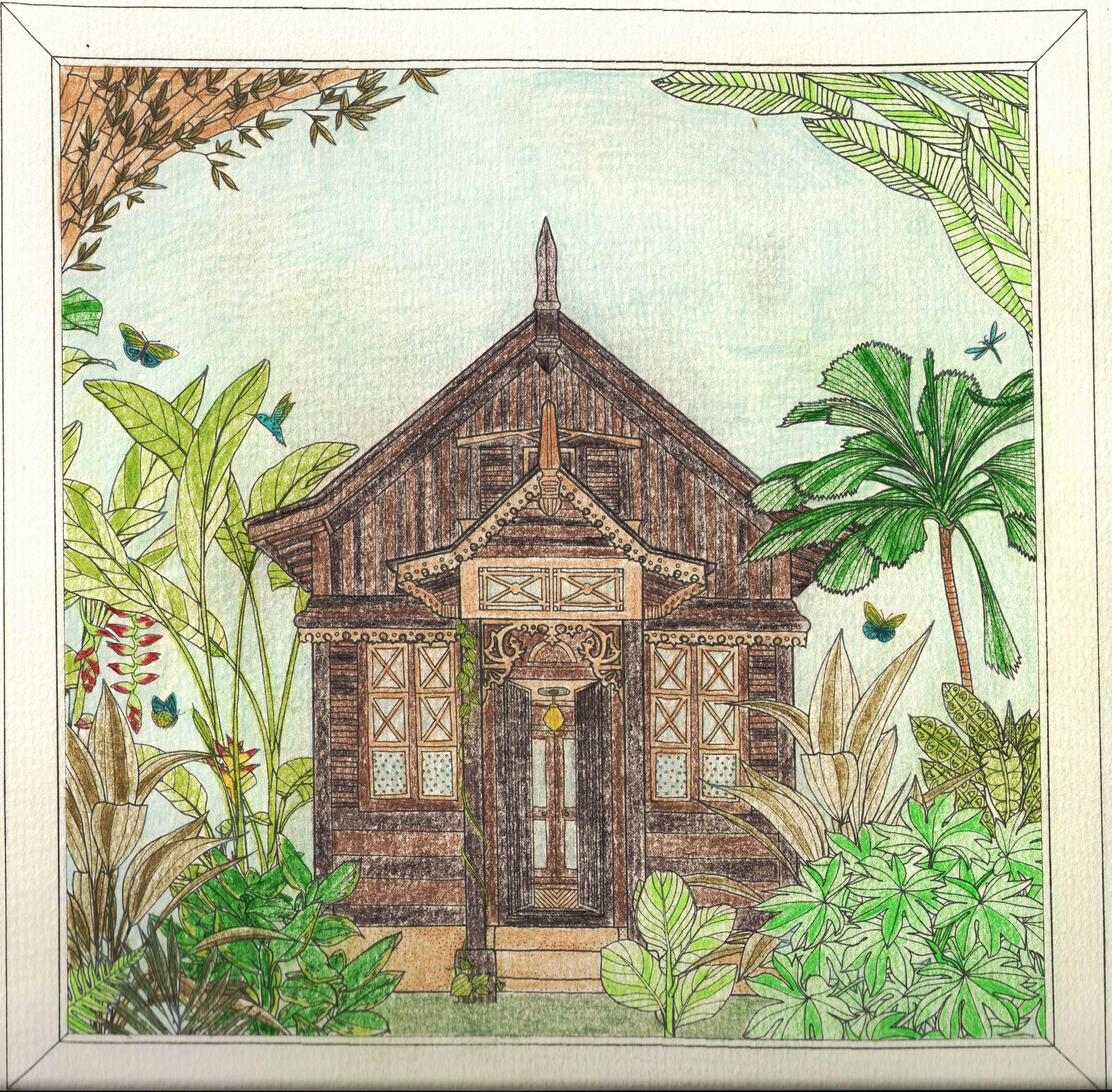 Jade Gedeon Rainforest Escape Coloring Book Line Artwork Coloring Books Painting