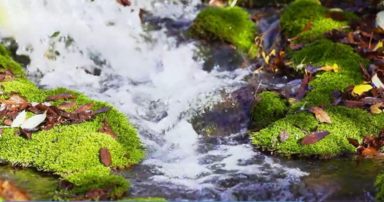 مناظر طبيعية مناظر طبيعية خلابة متحركة Hd مناظر طبيعية